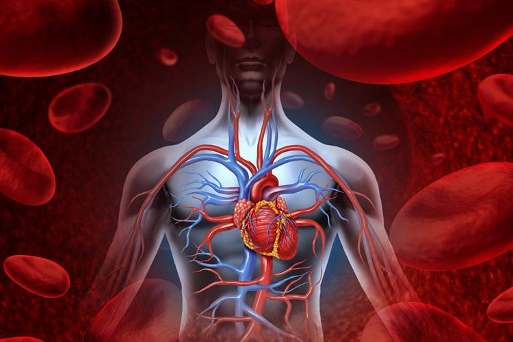 Détoxication et magnétothérapie